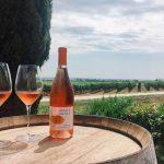 Tenuta La Badiola | Acquagiusta Wine