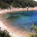 Elba Island
