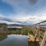 Naturschutzgebiet Diaccia Botrona