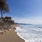 Der Küstenpark Sterpaia