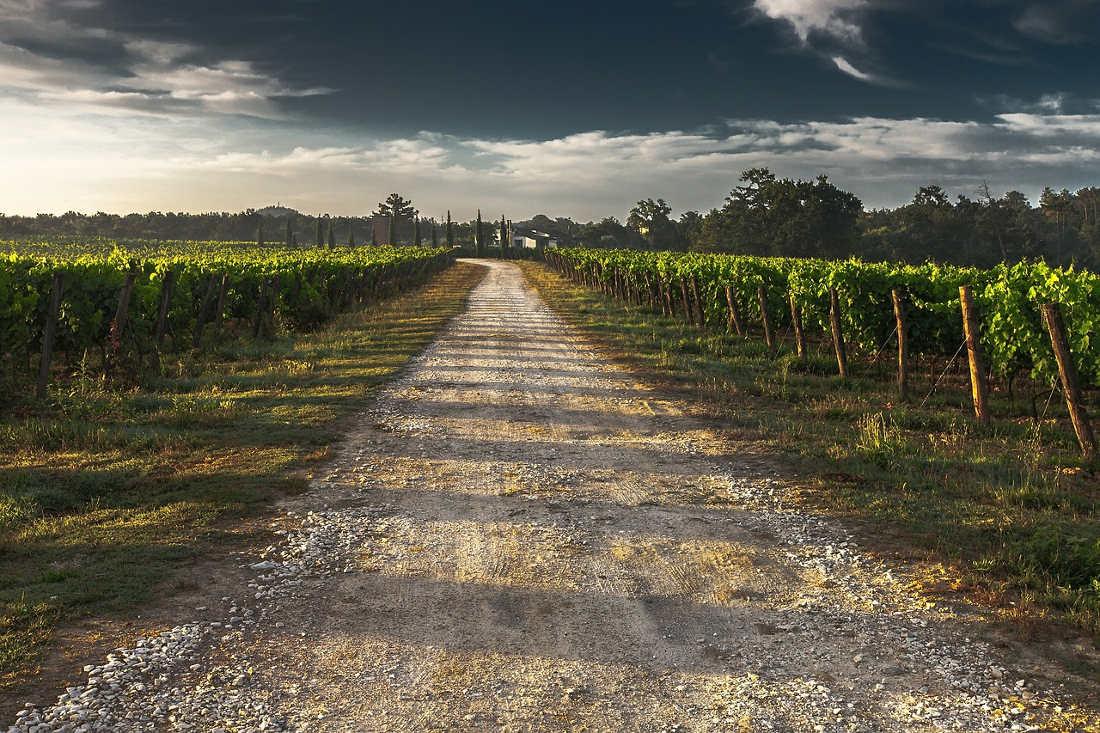 strada-del-vino-marermma